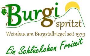 Weißer Spritzer Ein Schlückchen Freizeit Burgi g'spritzt Weinbau Krobath